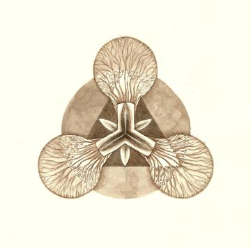Tri-Lily
