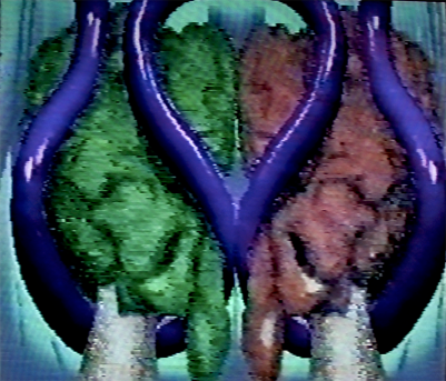 Capture of Green and Red Life. 1990. Digital image, Amiga 1000. 640x480px